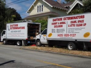 eastside-insulation-decontaminating