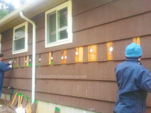home insulation in seattle, save money