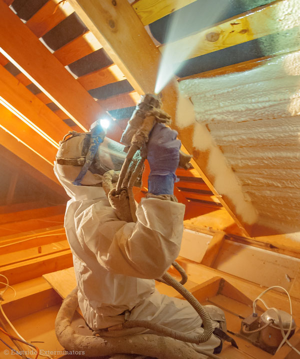 Spray Foam Insulation - Eastside Insulation